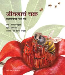 जीवनाचं चक्र - मधमाश्यांची रंजक गोष्ट